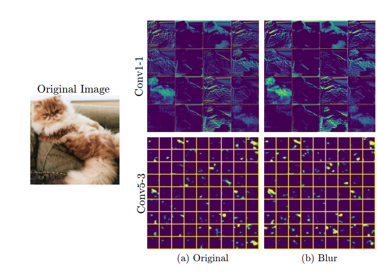 Understanding How Image Quality Affects Deep Neural Networks